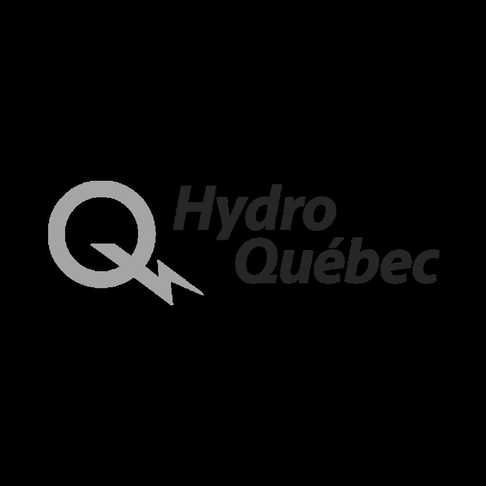 RDI_HydroQuebec